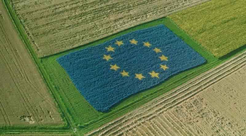 Tájékoztató a 2020 utáni közös agrárpolitika várható kereteiről